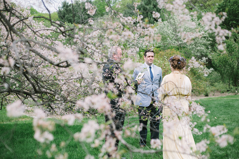 Wedding at Arnold Arboretum