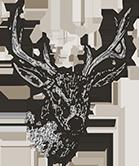 deer drawing