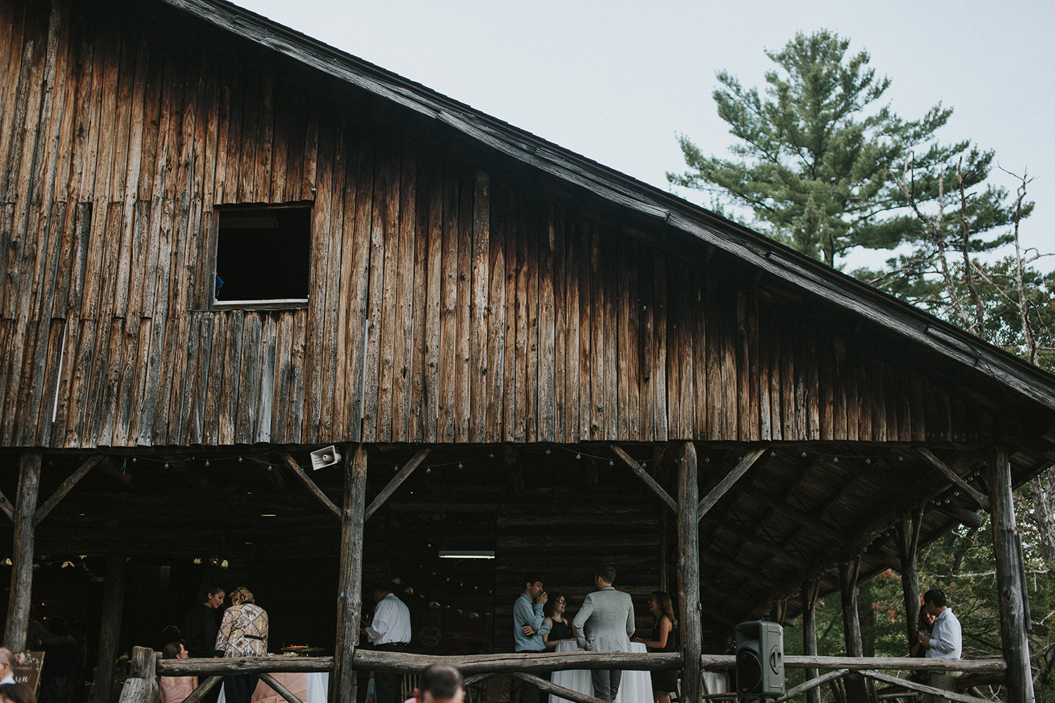 Massachusetts forest wedding